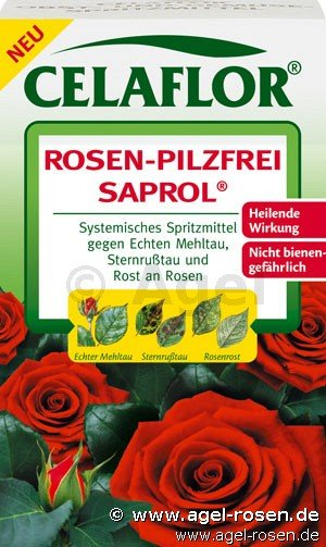 celaflor rosen pilzfrei saprol 100ml bei agel rosen online kaufen schutzmittel zubeh r. Black Bedroom Furniture Sets. Home Design Ideas